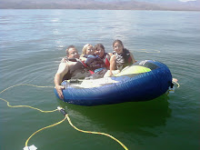 Roosevelt Lake 2008