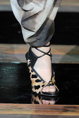 Roberto Cavalli Fall 2010 Ready to Wear 12