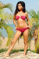 Rima Fakih sexy pictures