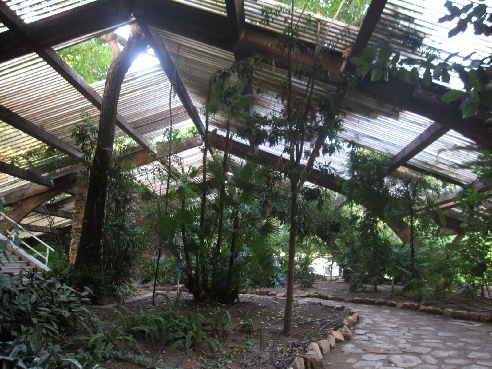Con ojos de lince recuperemos la expo for Jardin americano sevilla