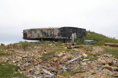 短期バイトとアゲハチョウ: 第二次世界大戦の遺物二つ ロシア skip... 短期バイトとアゲハ