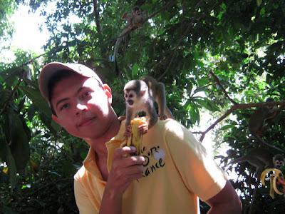 alimentando micos en la Isla de los micos Eco Turismo Colombia
