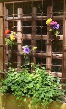 dos jardins