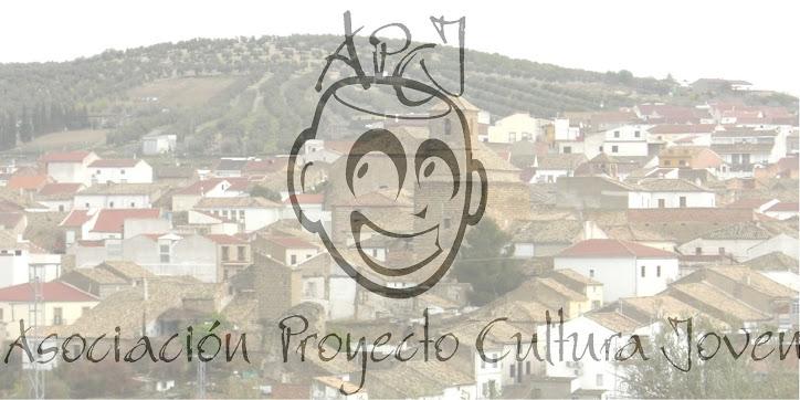 Asociación Proyecto Cultura Joven
