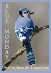 Happy Blue Monday