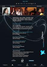 "Talleres 2010 - ""Festival Mendoza Flamenca Pura Sangre"""