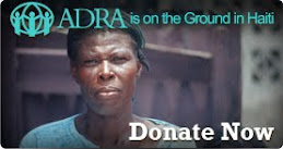 ¿Qué es ADRA?
