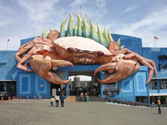 Rental Mobil Pariwisata Jakarta on Tempat Wisata Di Surabaya Dan Sekitarnya   Pariwisata