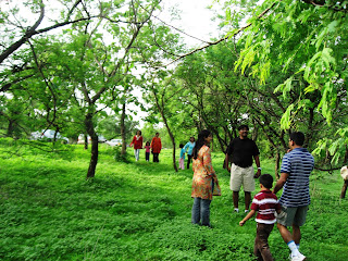 Into the Jungles near Pune