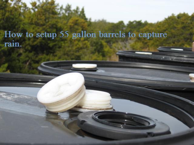 How to setup 55 gallon barrels to capture rain.