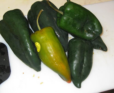 Flavors Of India Stuffed Poblano Peppers