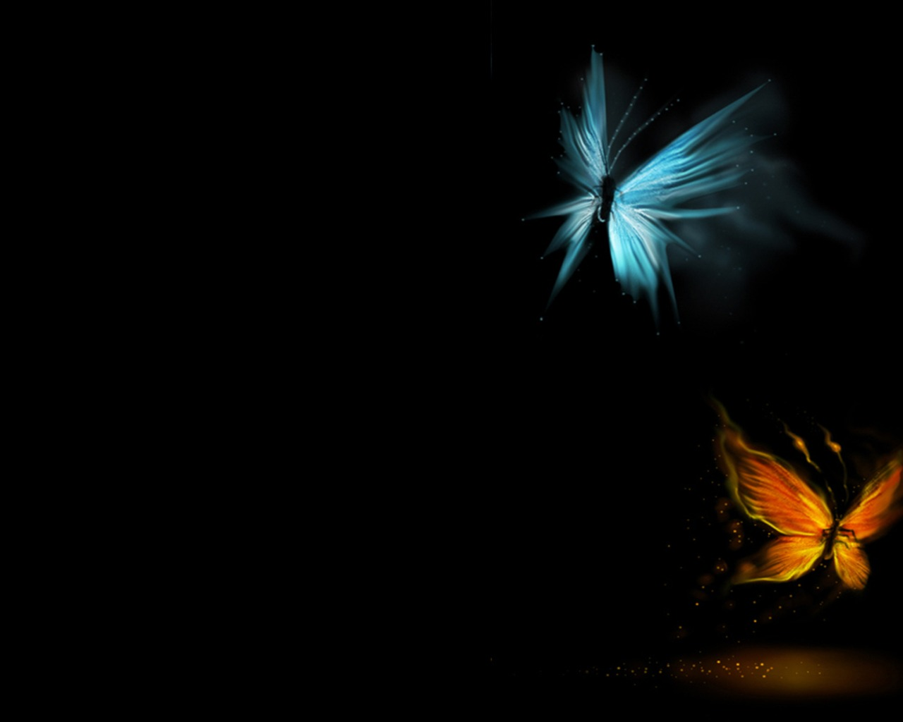 foto kupu kupu bergerak - gambar hewan