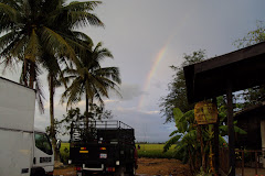 rainbow ?????? ..........