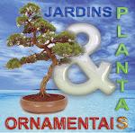PLANTAS & JARDINS