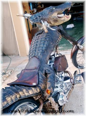 Crocodile Motorcycles