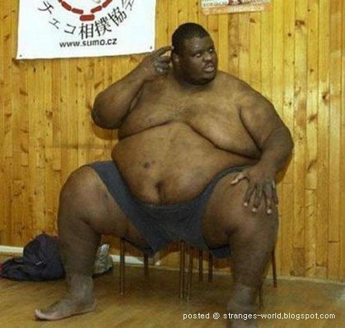 [sumo-wrestler-4.jpg]