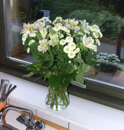 Hvide blomster i køkkenvinduet