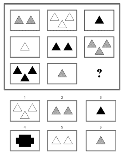 Eksempel fra en Stanford-Binet intelligens test