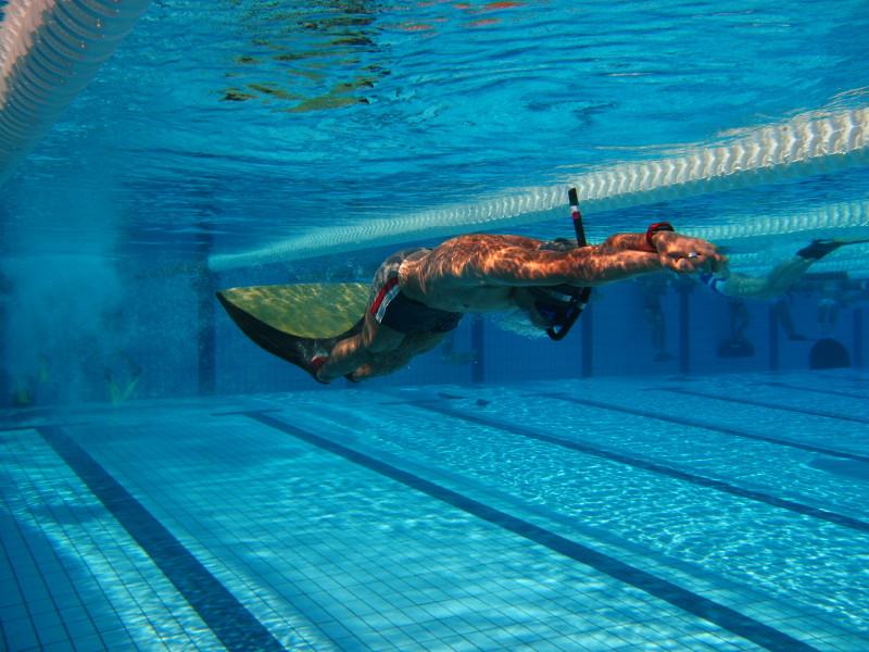 Alejandro aletas que es natacion con aletas for Piscina de natacion