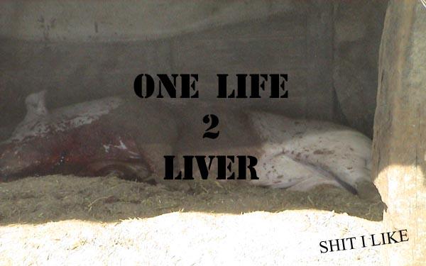 ONE LIFE 2 LIVER
