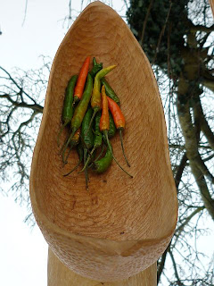 spoon carving first steps devon jon mac