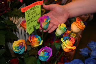 THE REAL RAINBOW ROSES