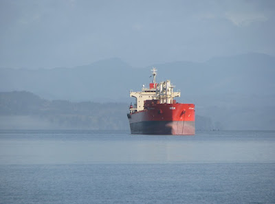 Ships on the Columbia River at Astoria, Oregon