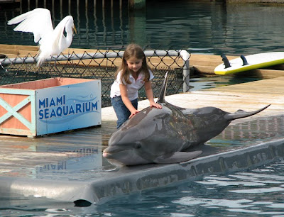 Girl with Dolphin, Miami Seaquarium