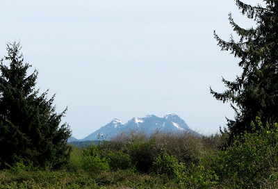 Saddle Mountain, seen from Warrenton