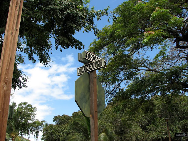 Front and Canal Streets, by the big banyan tree in Lahaina, Maui, Hawaii