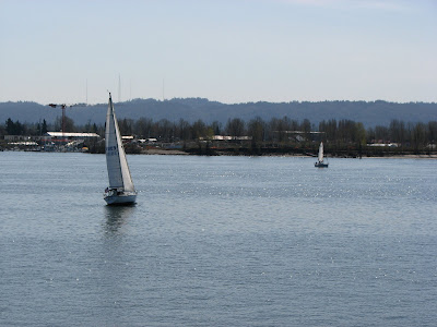 Sailboats on the Columbia River