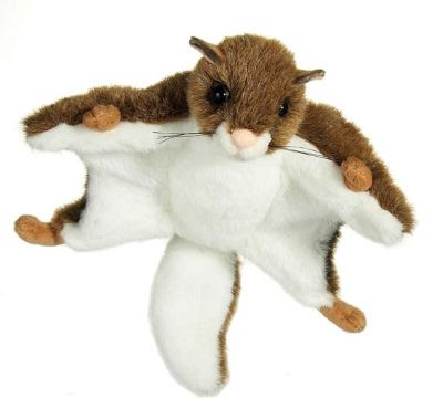 Stuffed Flying Squirrel