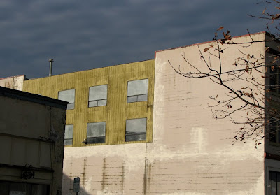 Building in Astoria, Bare Tree