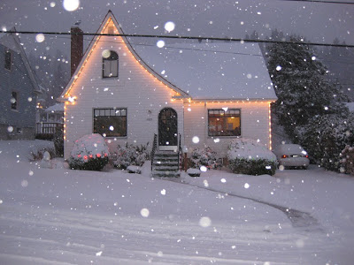 Snow in Astoria, 2008