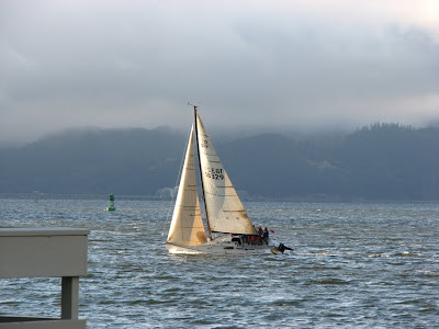 Sailboat on the Columbia River at Astoria, Oregon