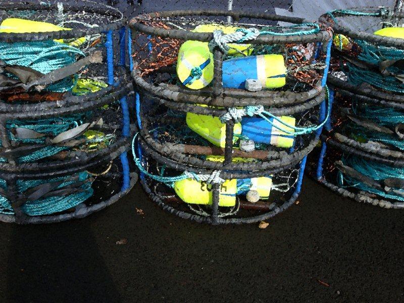 Colorful Crab Pots