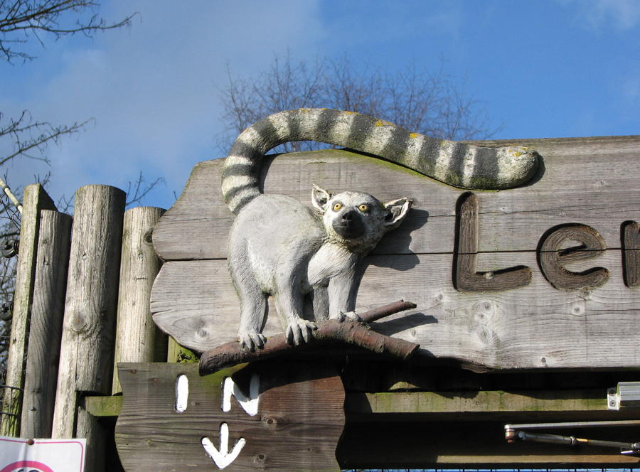 Lemur carving at Dudley Zoo