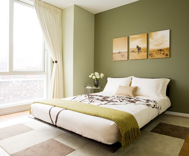 Parede verde oliva