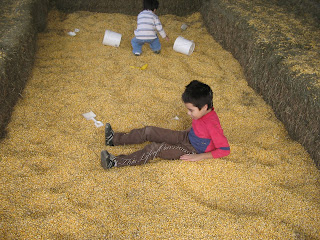 YDS & ODS in corn pit