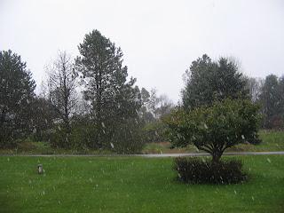 Snow in October