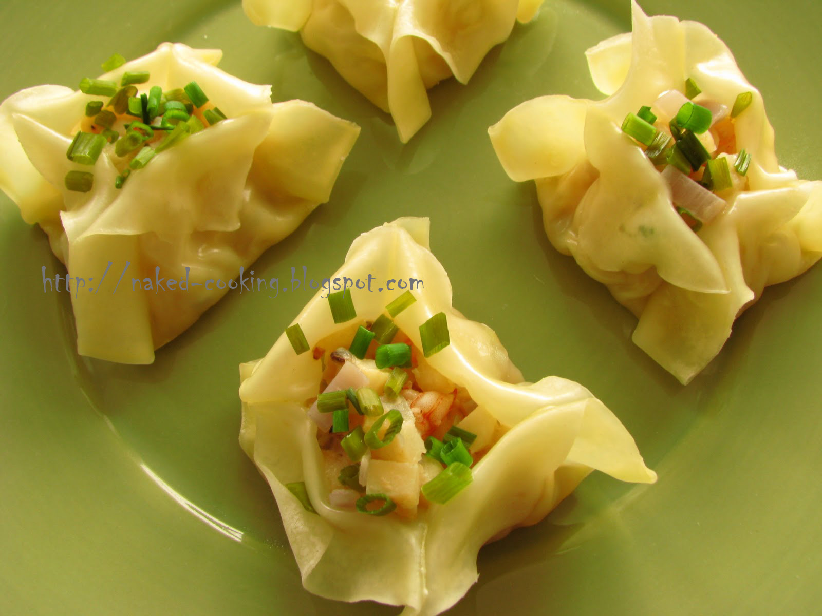 Asian Shrimp Dumplings Recipes — Dishmaps