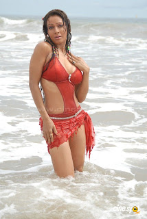 PAKI HEDGE HOT PHOTOS