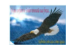 Isaías 40.31