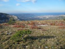 1c - I colori dell'autunno nel Carso di Trieste