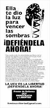 LA CASA QUE VENCE LAS SOMBRAS