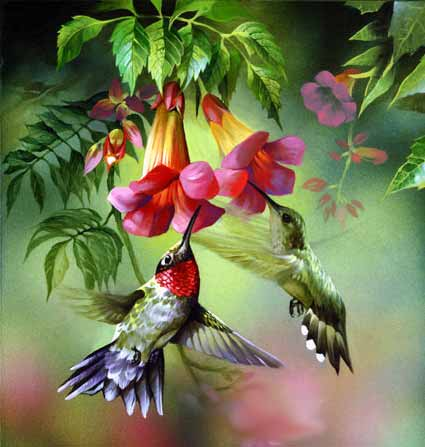 Paintings Images on Oil Paintings Birds Images  Oil Paintings Birds Photos  Oil Paintings