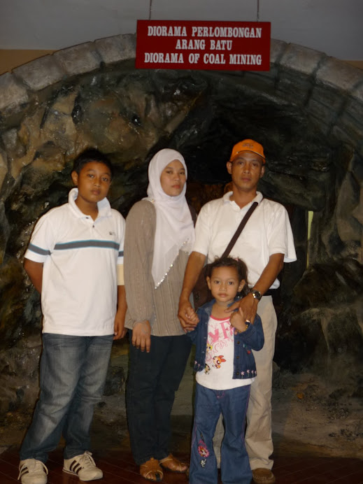 Sabrie's family : taukeh frozen product nih