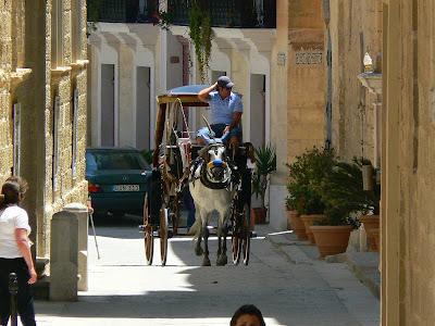 Imagini Malta: caleasca trasa de cai