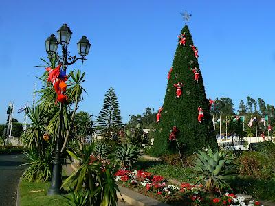 Obiective turistice Etiopia - pom de Craciun hotel Sheraton Addis Ababa
