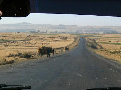 Imagini Etiopia: spre sudul Etiopiei